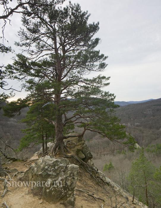 _DSC0512_Panorama.jpg