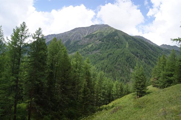 Панорама2.jpg